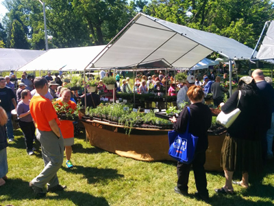 Photo: Herb Festival 2015