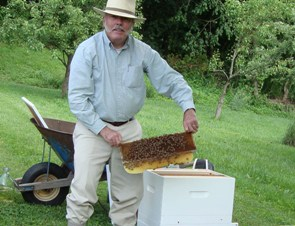 Bob Stanhope and his bees